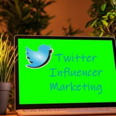 Finding Twitter Influenners
